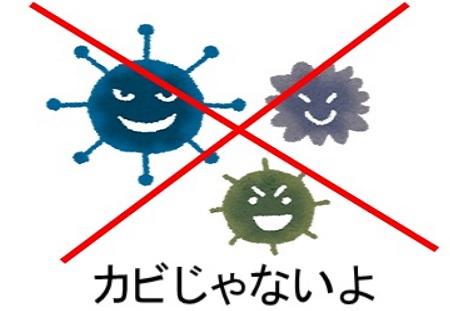 浴槽の青い汚れの原因